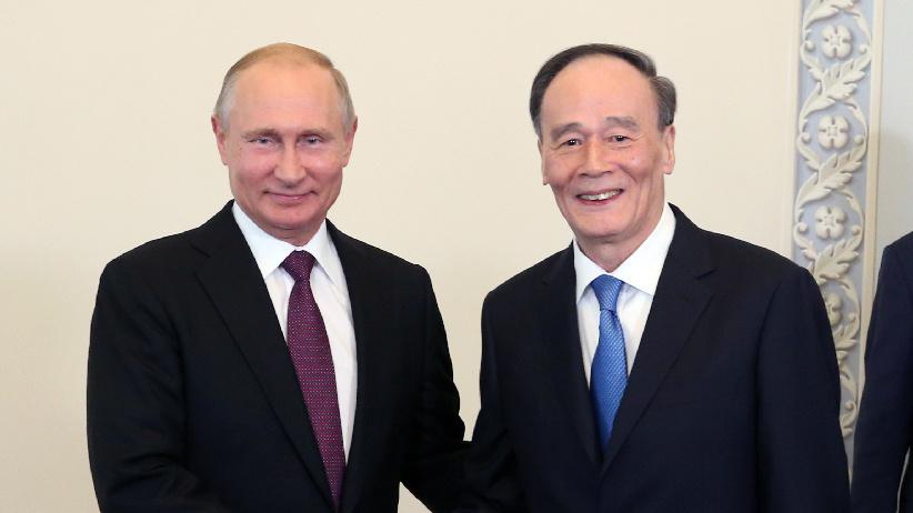 俄罗斯总统普京会见王岐山副主席