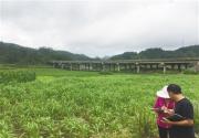贵州完成农用地土壤详查采样制样