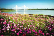 全面推进河长制 重塑郑州水生态
