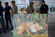 马来西亚将加强打击偷猎马来虎行为