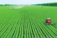 农业发展规律的必然要求:始终要突出农民的主体地位