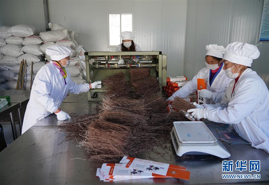 """(走基层 听民声·图文互动)(5)电商扶贫 让陕西山区农业拥抱""""蓝海"""""""