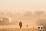 今天是世界防治荒漠化和干旱日