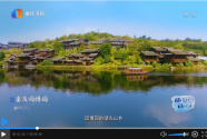 """两江新区""""双晒""""尽显开放与智慧 独特魅力引好评如潮"""