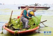 海岸环卫 保洁海滨