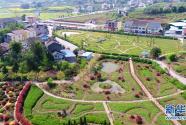 上海完成首批乡村振兴示范村建设任务