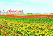 北京今年投入1亿元补贴绿色防控产品