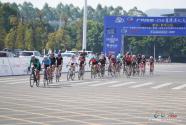 2019(第二届)环粤港澳大湾区城市自行车挑战赛惠州罗浮山站举行