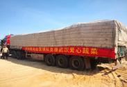 心系抗疫前線深圳佳兆業足球隊捐贈250噸蔬菜支援湖北