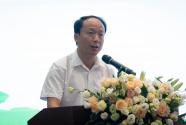 广东推进实施乡村美术教师培育公益项目