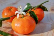 橘子:从里到外皆入药,开胃理气润肺燥!