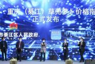 新华·重庆(綦江)草蔸萝卜价格指数发布