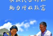 西藏將打造700家以上資產過百萬元農牧民合作社