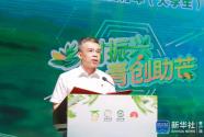2021年全国青年(大学生)乡村振兴百色芒果网络营销创新创业峰会举行