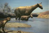 史前巨兽争霸赛:谁才是陆地最大哺乳动物?
