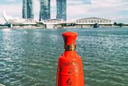 """红西凤——第五届国际展望大会的""""一抹红"""""""